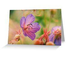 Violet  Fleurs  Greeting Card