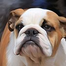 British Bulldog puppy.. by Cazzie Cathcart