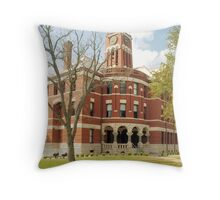 Lee Co. Courthouse, Giddings, Tx. 1899 Throw Pillow