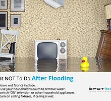 What NOT To Do After Flooding by waterextraction