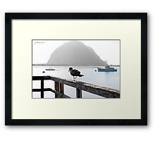 Bird's Eye View Framed Print
