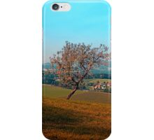 Tree on indian summer afternoon | landscape photography iPhone Case/Skin