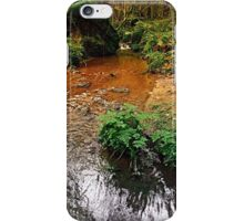 Little stream in autumn colors | landscape photography iPhone Case/Skin