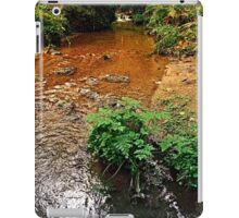 Little stream in autumn colors | landscape photography iPad Case/Skin