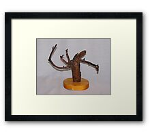 Nature's Art No 17A from Romania Framed Print