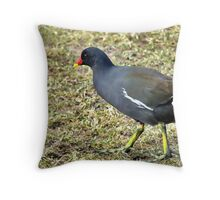 Looking for Breakfast. Throw Pillow