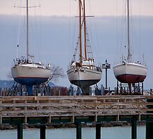 Dry Docked by Diane Rodriguez