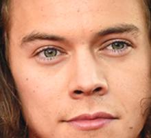 Harry Styles Fedora Sticker