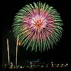 Fireworks - Chrysanthemum in green and pink by Joy Leong-Danen