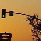Sunset #3 by Lynn  Gettman
