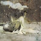 Sonidos del silencio by dmcart