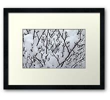 Untitled.00172 Framed Print
