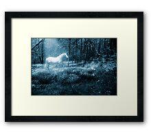 Under a moonlit sky Framed Print