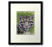 Berry's Clouded Leopard Framed Print