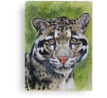 Berry's Clouded Leopard Canvas Print