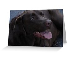 Shiloh Greeting Card