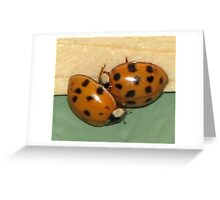Ladybugs... Greeting Card