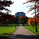 Another Fall Day - On the Oval w/ Library  by Rachel Counts