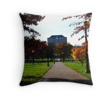 Another Fall Day - On the Oval w/ Library  Throw Pillow