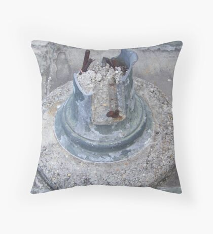 Reminders Of A Natural Disaster Throw Pillow