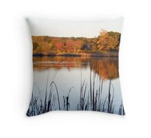 Coolidge Pond Throw Pillow