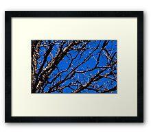Untitled.00201 Framed Print