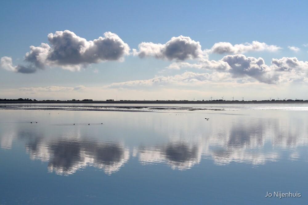 Mirror in Nature by Jo Nijenhuis