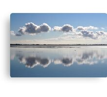 Mirror in Nature Canvas Print