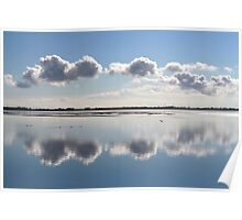 Mirror in Nature Poster