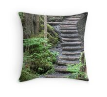 Paths in Life - Alaska Throw Pillow