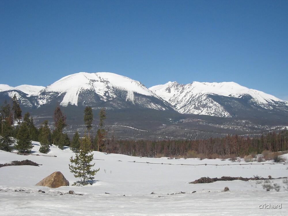 Colorado Mountain Scene by crichard
