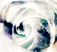 White Ice by Vanessa Barklay