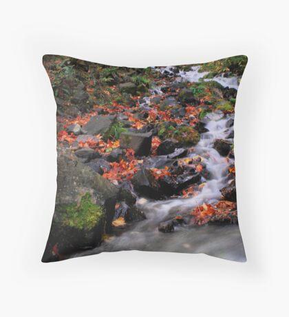 Northwest stream Throw Pillow
