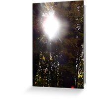 Autumn Sun Rays #1 Greeting Card