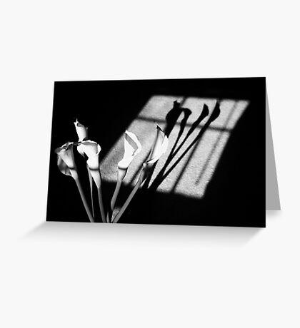 Shadows of PEACE Greeting Card