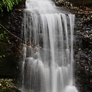 WATERFALL IN THE CASCADES by Michael Beers
