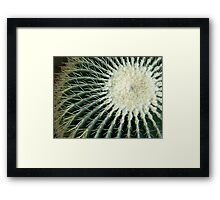 Cactus:  Get the Point Framed Print