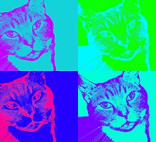 Psychedelic Cat by Nathan Walker