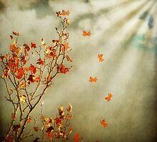 Leaves Fall by VLFatum