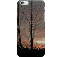 Sky Blue Pink iPhone Case/Skin
