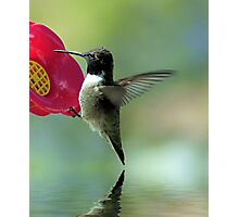 Landing Safely Photographic Print