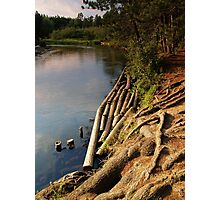 Manistee River Photographic Print
