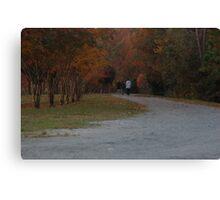 The Chosen Path Canvas Print