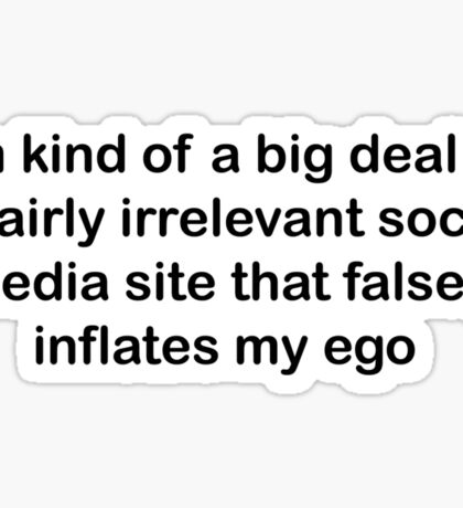 I'm kind of a big deal on a fairly irrelevant social media site that falsely inflates my ego  Sticker