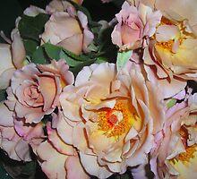 """""""Julia's Rose"""" by Gail Mew"""