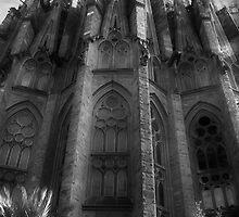 La Sagrada Familia by Hollie Nass