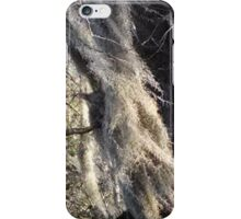 Spanish moss blowing in wind iPhone Case/Skin