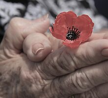 Remembrance Day by Elaine Harriott