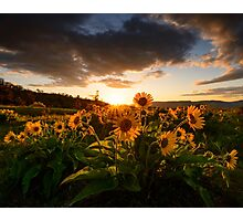Rowena Crest Sunset Photographic Print