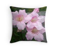Baby Pink Throw Pillow